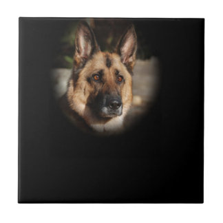 German Shepherd Dog Tile