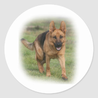 "German Shepherd Female ""Gilla"" Classic Round Sticker"