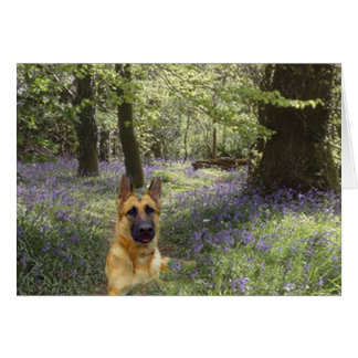 German Shepherd Forest Card