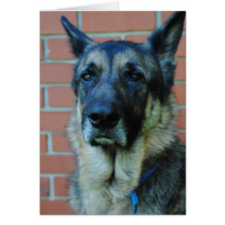 German Shepherd Happy Fathers Day Card