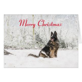 German Shepherd in the snow Card