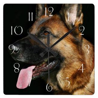 German shepherd on black background square wall clock