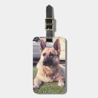 German Shepherd, Pet Lover Protective Custom Dog Bag Tag