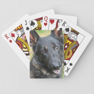 German Shepherd Poker Deck