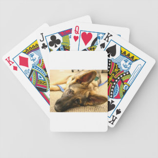 German Shepherd Poker Deck