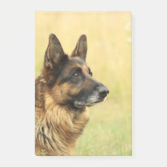 German Shepherd Post-it Notes