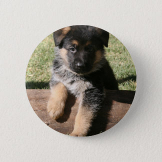 """German Shepherd Puppy """"Big Max"""" 2 Inch Round Button"""