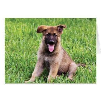 German Shepherd Puppy Card
