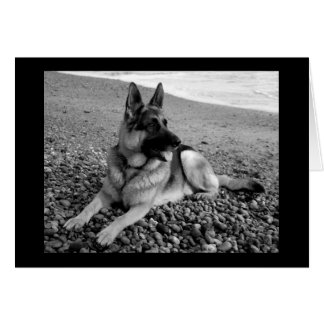 German Shepherd Puppy Dog Blank Note Card