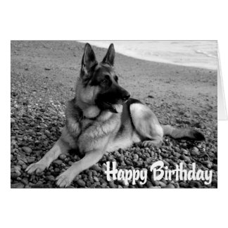 German Shepherd  Puppy Dog  Happy Birthday Card