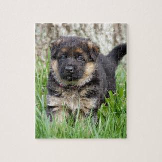 German Shepherd Puppy Puzzle