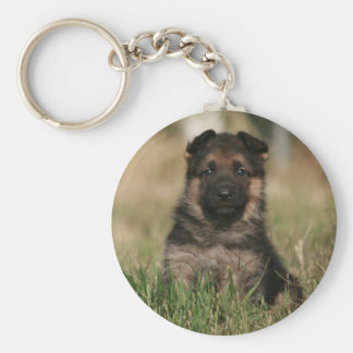 "German Shepherd Puppy ""Splash"" Keychain"