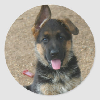 German Shepherd Puppy Sticker