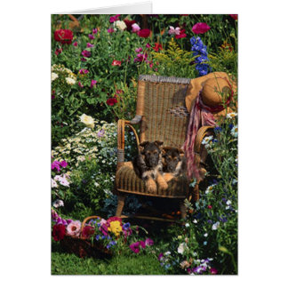 German Shepherd Pups Card Garden