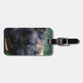 German Shepherd Randy vom Leithawald Luggage Tag