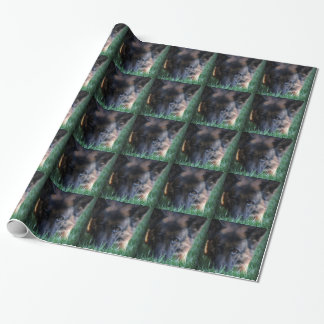 German Shepherd Randy vom Leithawald Wrapping Paper