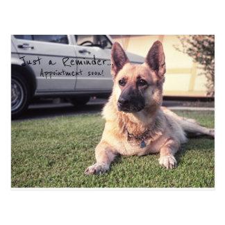 German Shepherd, Reminder Dog Vet Appointment Postcard