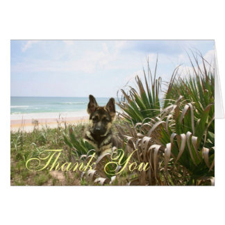 German Shepherd Thank You Card Beachgrass
