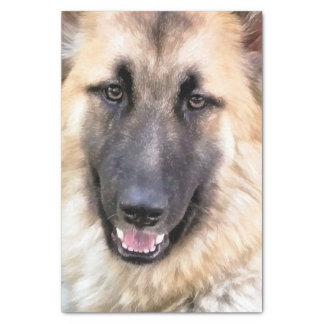 GERMAN SHEPHERD TISSUE PAPER
