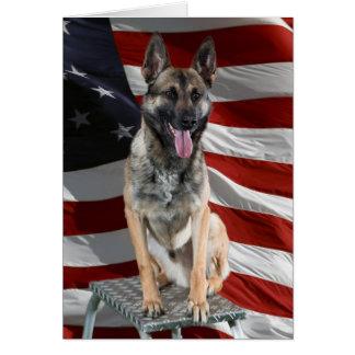German shepherd usa - patriotic dog - usa flag card