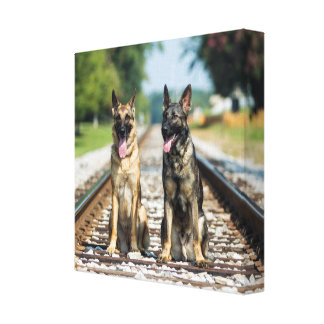 German Shepherds on Railroad Tracks Canvas Print