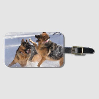 German Shepherds playing in snow luggage tag
