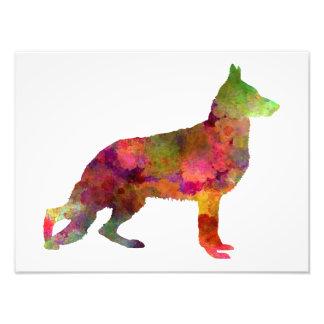 German Sherpherd dog 01 watercolor 2 Photo Print