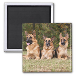 German Sherpherd Family Magnet