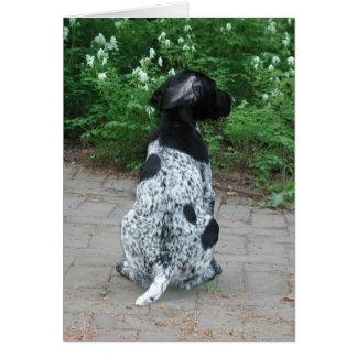 German Shorthair Pointer Puppy Card