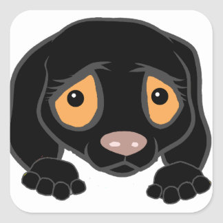 german shorthaired pointer black peeking square sticker