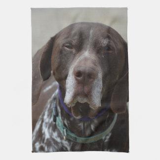 German Shorthaired Pointer Dog Kitchen Towel