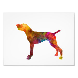 German Shorthaired Pointer in watercolor Photo Print