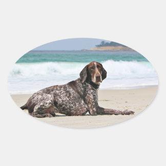 German Shorthaired Pointer - Luke - Riley Oval Sticker