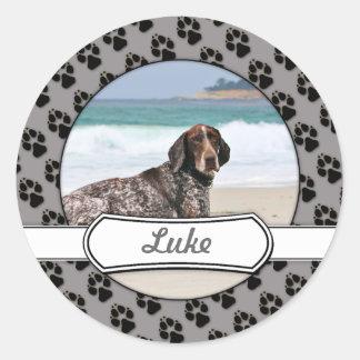 German Shorthaired Pointer - Luke - Riley Round Sticker