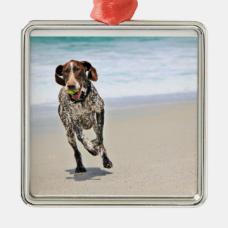 German Shorthaired Pointer - Luke - Riley Silver-Colored Square Ornament