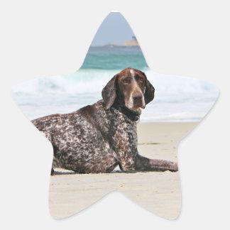 German Shorthaired Pointer - Luke - Riley Star Sticker