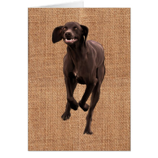 German Shorthaired Pointer Pet-lover Card