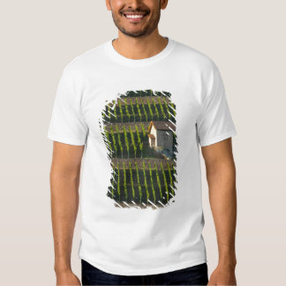 Germany, Franconia, Wertheim. Special hillside 2 Tee Shirts