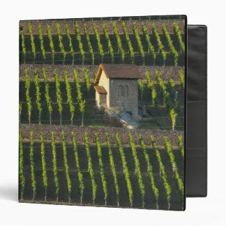 Germany, Franconia, Wertheim. Special hillside 2 Vinyl Binders
