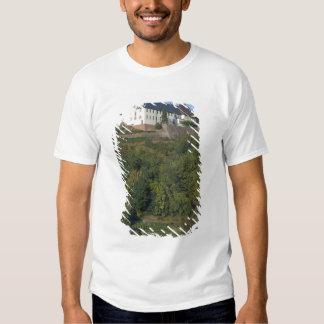 Germany, Franconia, Wertheim. Special hillside Tees