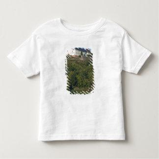 Germany, Franconia, Wertheim. Special hillside Tshirts