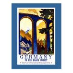 Germany's Black Forest Vintage Travel Poster Postcard