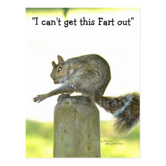 Get this fart out Funny Squirrel Postcard