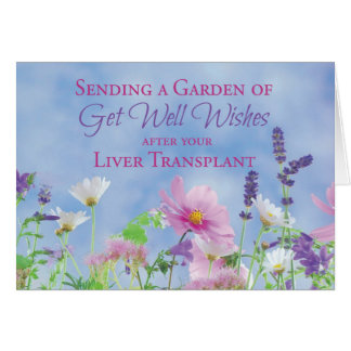 Get Well After Liver Transplant, Garden Flowers Card