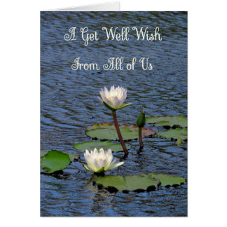 Get Well Card from All of Us Water Lilies
