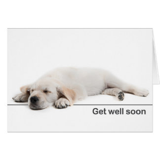 Get well card golden retriever puppy