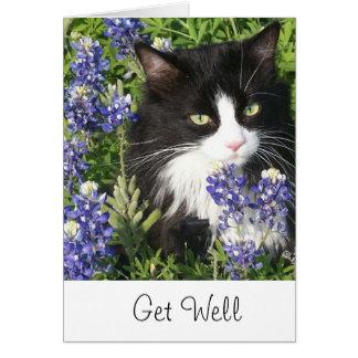 Get Well Card Tuxedo Cat in Texas Bluebonnet