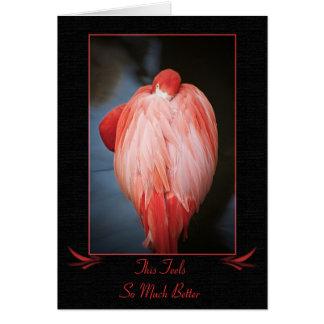 Get Well Flamingo Card