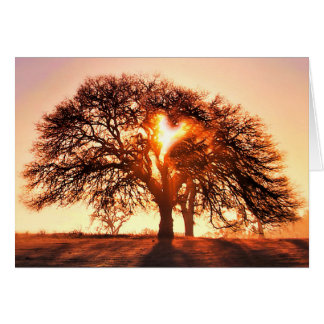 Get Well Oak Tree and Heart Card