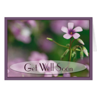 Get Well - Pink Wood Sorrel Greeting Card